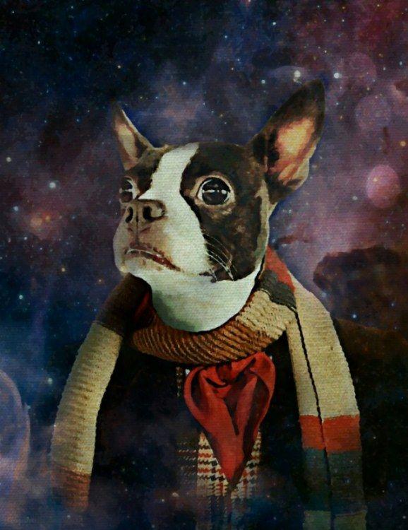 the-fourth-dogtor_whovian.jpg