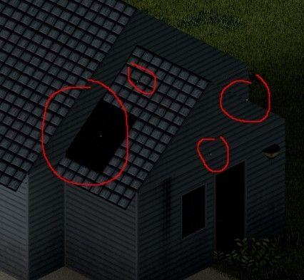PZ - roof bug 02.jpg