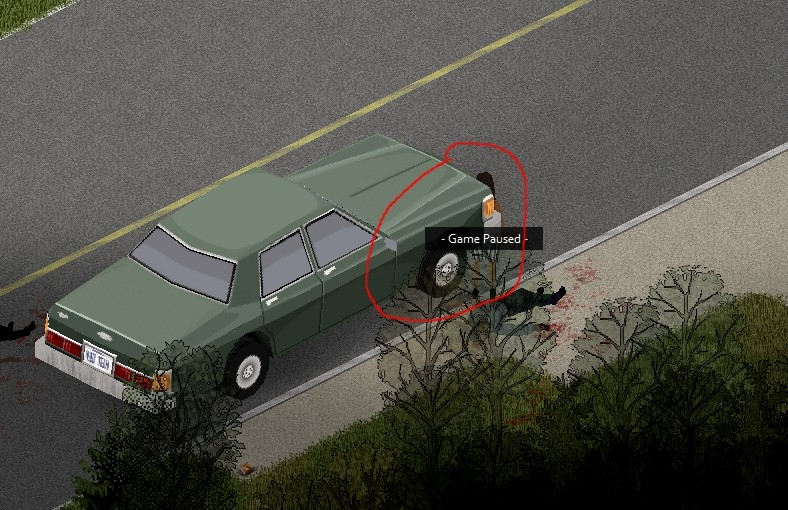 PZ - car bug 01.jpg