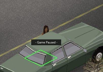 PZ - car bug 02.jpg