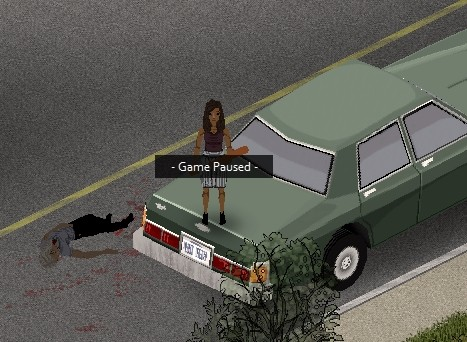 PZ - car bug 03.jpg