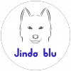 JindoBlu